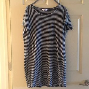 Everlane Striped Dress